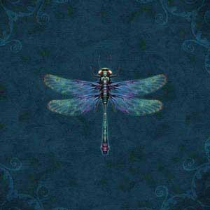 Mystical Dragonfly