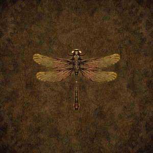 Steampunk & Gear Dragonfly