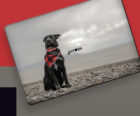 Create Your Own for Custom ASUS Laptop Skins