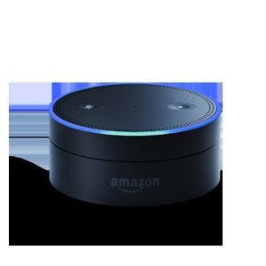 Shop Amazon Echo Dot Skins