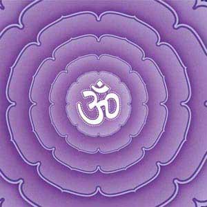 Sanskrit Purple