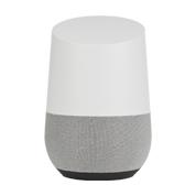 Google Home Skins