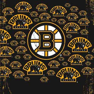 Boston Bruins Blast