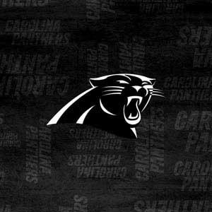 Carolina Panthers Black & White