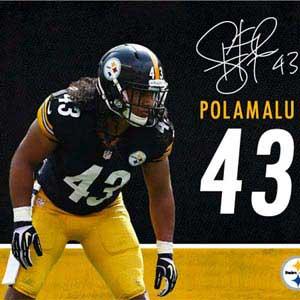 Troy Polamalu Action Shot Pittsburgh Steelers
