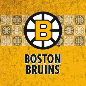 Boston Bruins Vintage