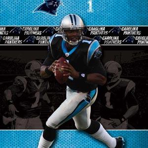 Cam Newton Action Shot Carolina Panthers