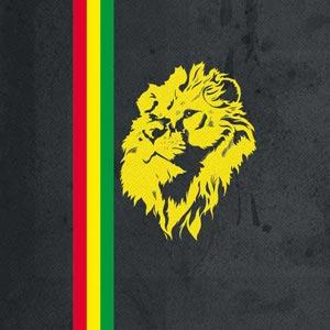 Vertical Banner - Lion of Judah