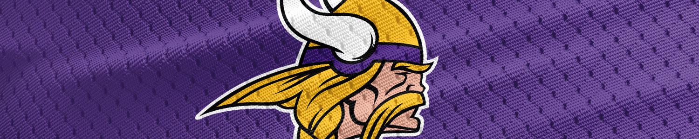 Minnesota Vikings Banner