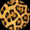 Animal Prints Cases & Skins