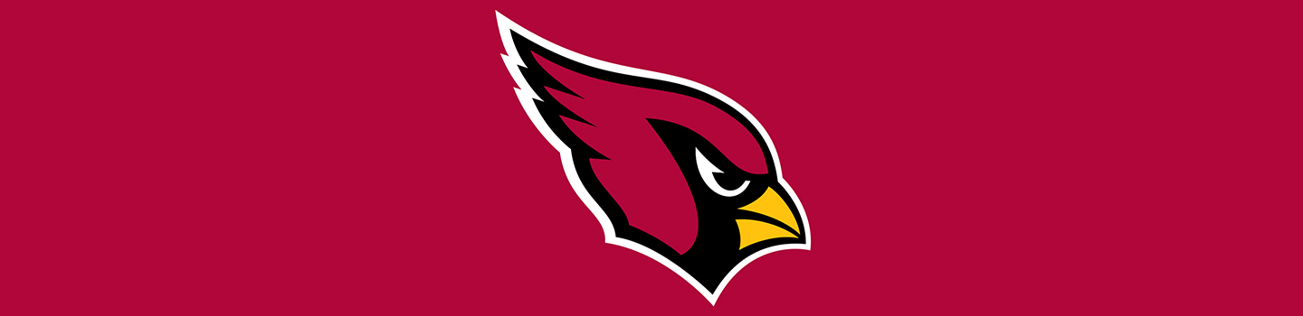 NFL Arizona Cardinals Cases and Skins