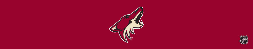 Arizona Coyotes Cases & Skins