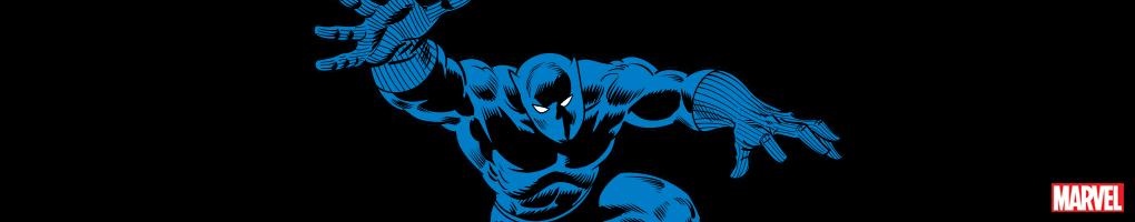 Black Panther Cases & Skins