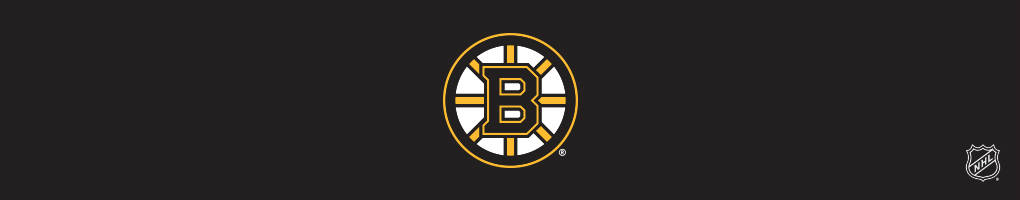 Boston Bruins Cases & Skins