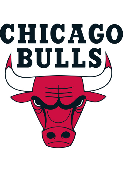Shop Chicago Bulls