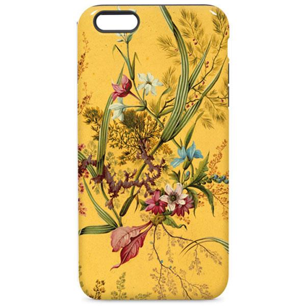Classic Art iPhone Cases