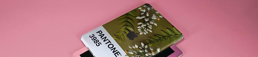 Custom iPad Skins