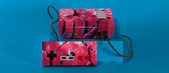 Custom Nintendo Skins