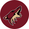 Shop Arizona Coyotes Cases & Skins