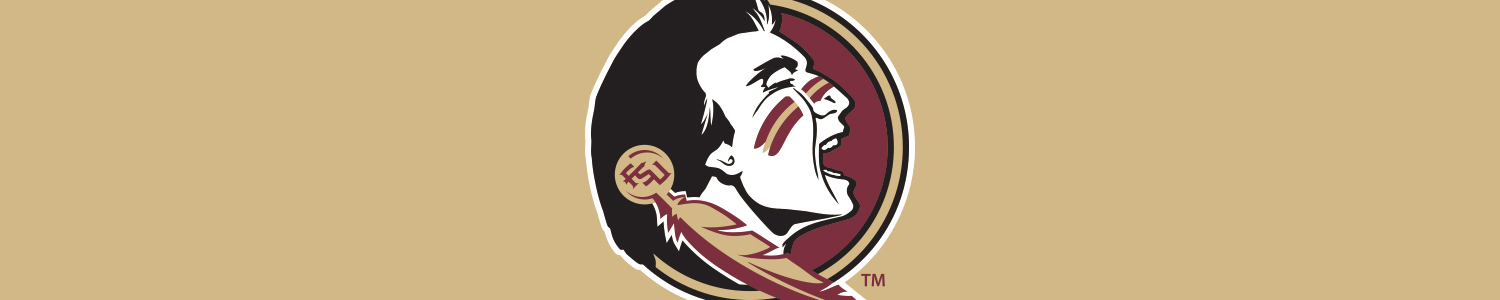 Florida State University Cases and Skins