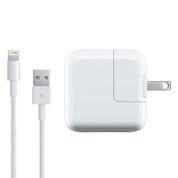iPad Charger (10W USB) Skins