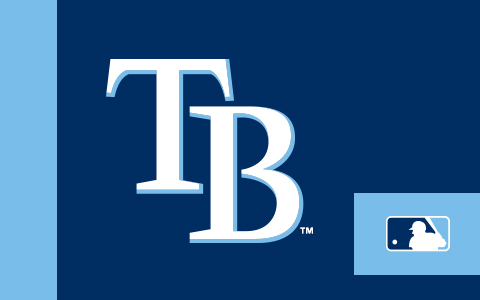MLB Tampa Bay Rays Cases and Skins