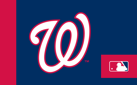 MLB Washington Nationals Cases and Skins