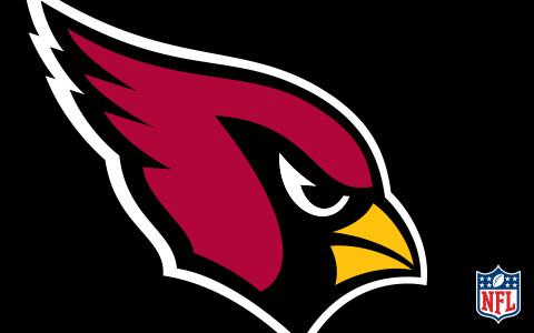 NFL Arizona Cardinals Cases and Skins