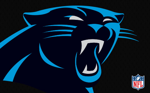 NFL Carolina Panthers Cases and Skins