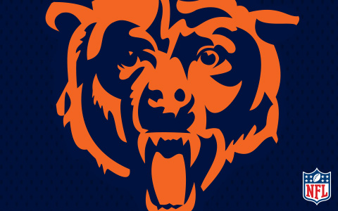 NFL Chicago Bears Cases and Skins