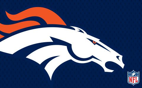 NFL Denver Broncos Cases and Skins