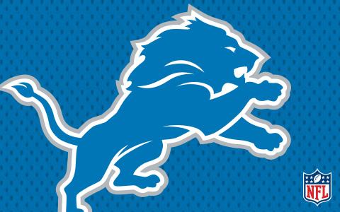 NFL Detroit Lions Cases and Skins