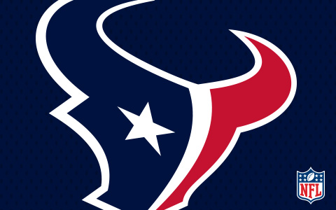 NFL Houston Texans Cases and Skins
