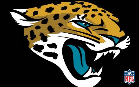 NFL Jacksonville Jaguars Cases and Skins