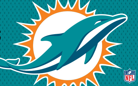 NFL Miami Dolphins Cases and Skins