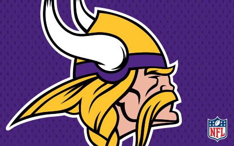 NFL Minnesota Vikings Cases and Skins