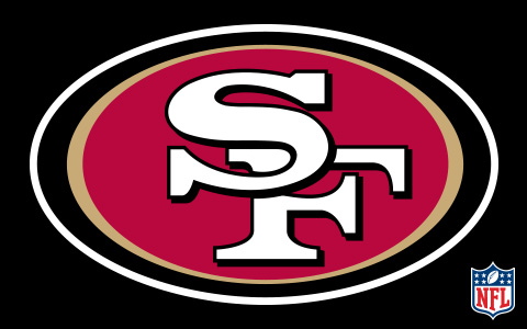 NFL San Francisco 49ers Cases and Skins