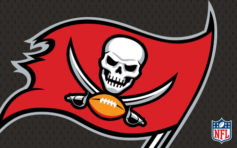 NFL Tampa Bay Buccaneers Cases and Skins