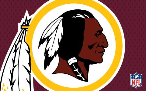 NFL Washington Redskins Cases and Skins