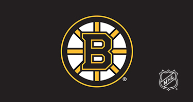 Designs Mob Boston Bruins Phone Cases and Skins