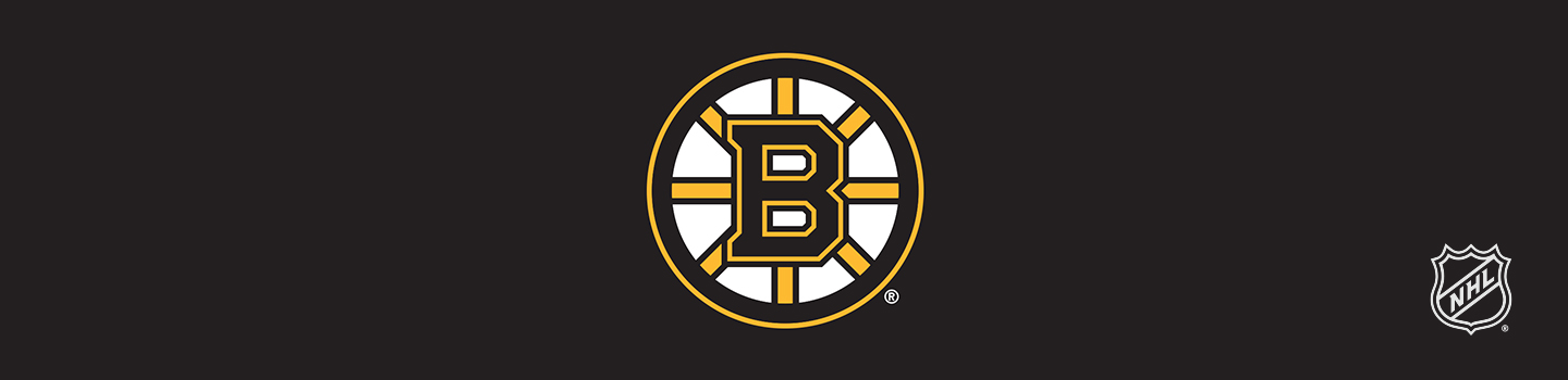 Designs Boston Bruins Phone Cases and Skins