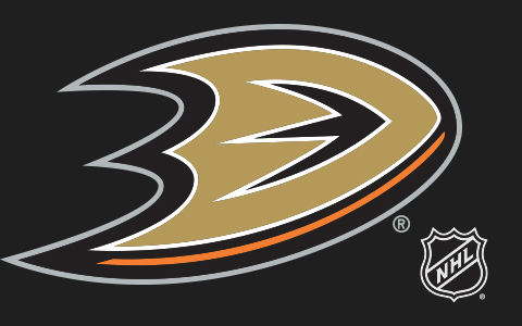 NHL Anaheim Ducks Cases and Skins