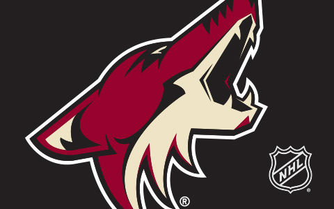 NHL Arizona Coyotes Cases and Skins