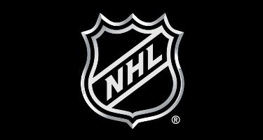 Designs Mob NHL Decals