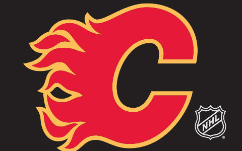 NHL Calgary Flames Cases and Skins