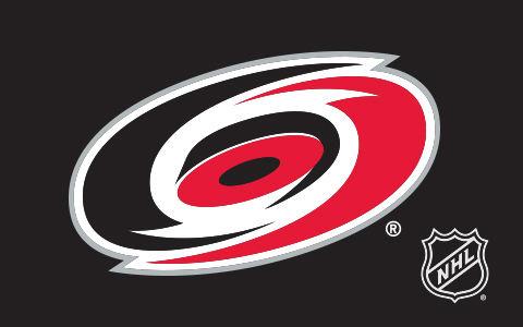 NHL Carolina Hurricanes Cases and Skins