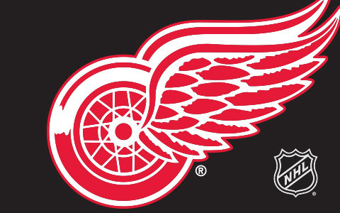 NHL Detroit Red Wings Cases and Skins