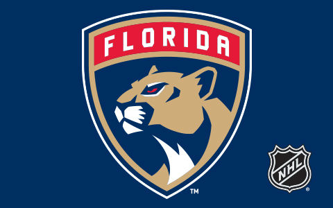 NHL Florida Panthers Cases and Skins