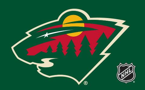NHL Minnesota Wild Cases and Skins