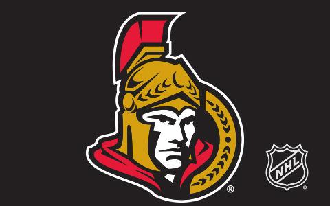 NHL Ottawa Senators Cases and Skins